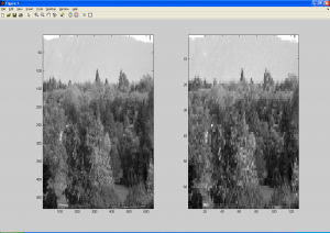 Downsampled Image - Before and After