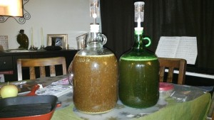 Carboys containing mead.